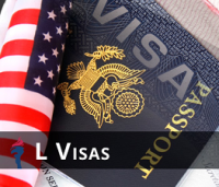Website - L visa image