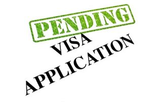 VERDIN Immigration Law - VIBE Facts for E2 Visas